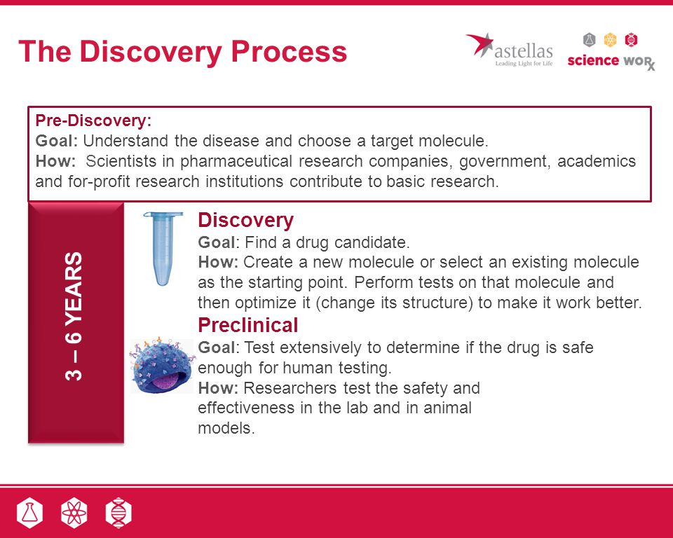 The Discovery Process 3 – 6 YEARS Discovery Preclinical Pre-Discovery: