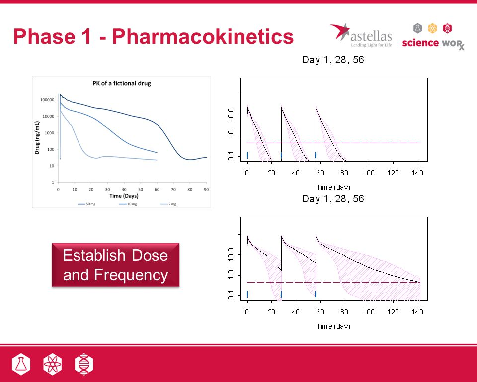 Phase 1 - Pharmacokinetics