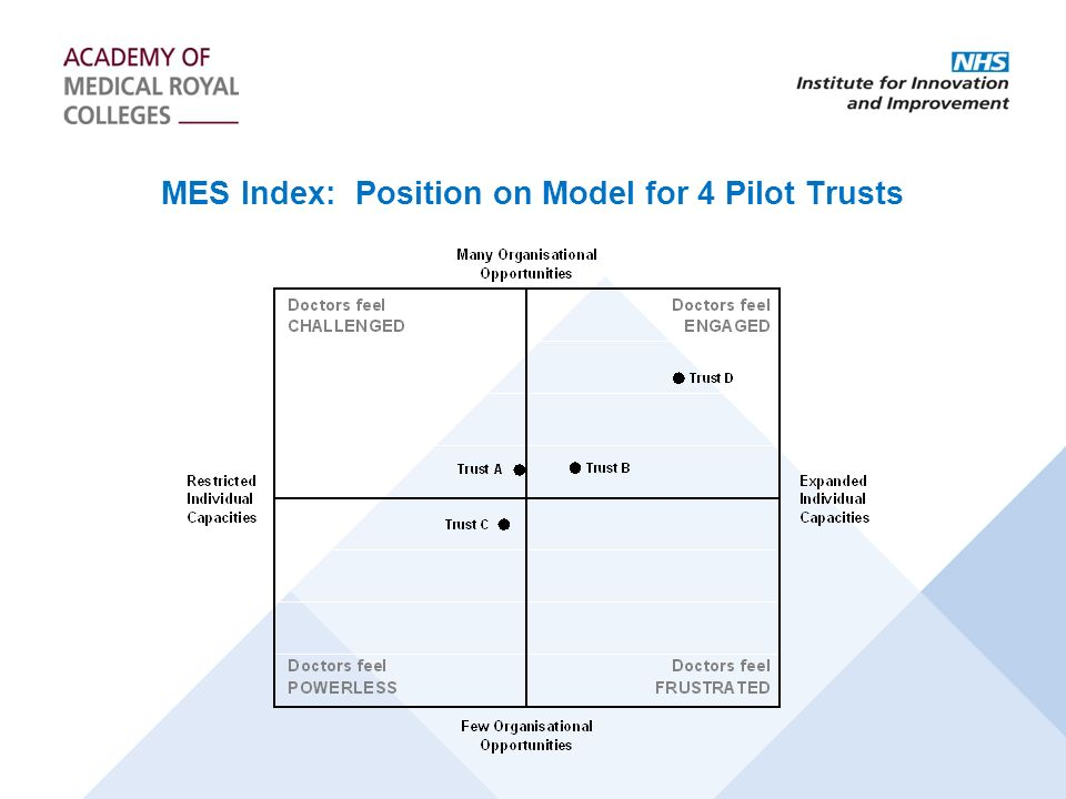 MES Index: Position on Model for 4 Pilot Trusts