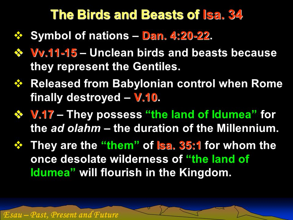 The Birds and Beasts of Isa. 34