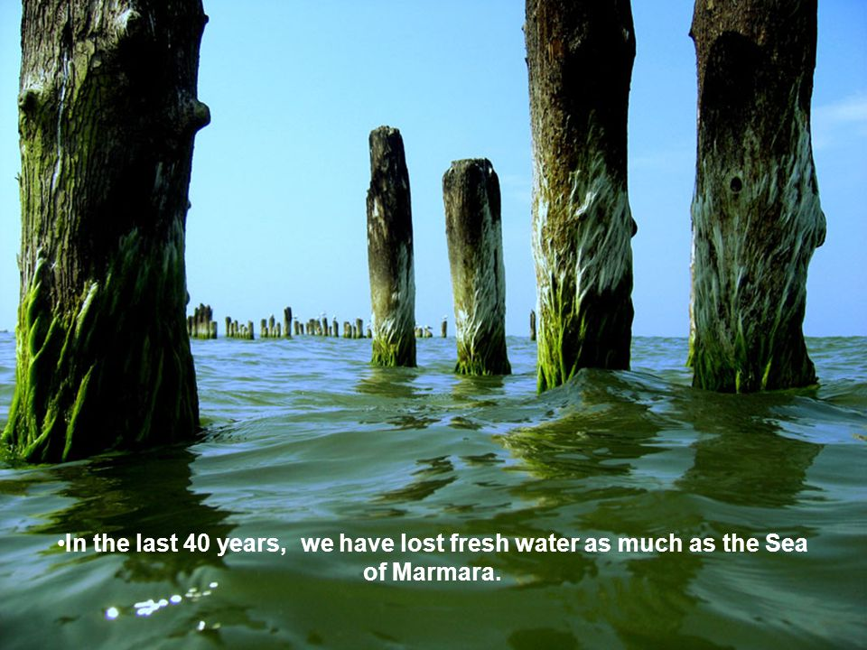 In the last 40 years, we have lost fresh water as much as the Sea of Marmara.