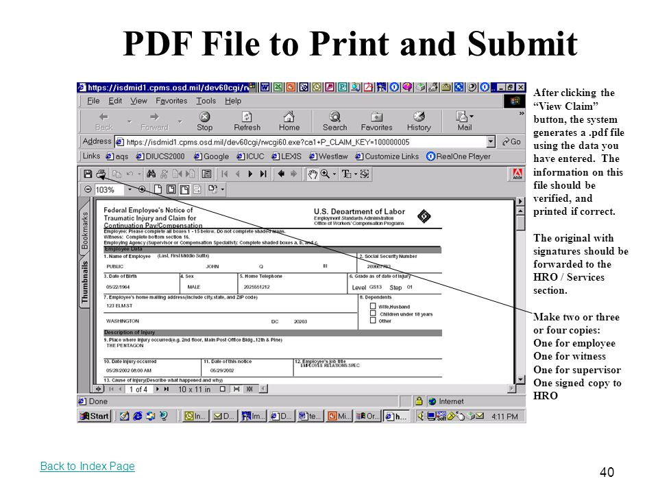 PDF File to Print and Submit