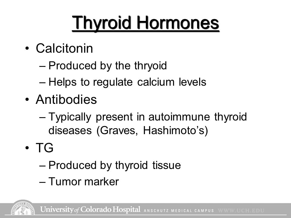Thyroid Hormones Calcitonin Antibodies TG Produced by the thryoid