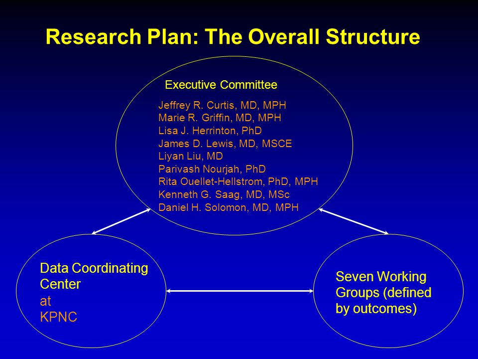 Research Plan: The Overall Structure