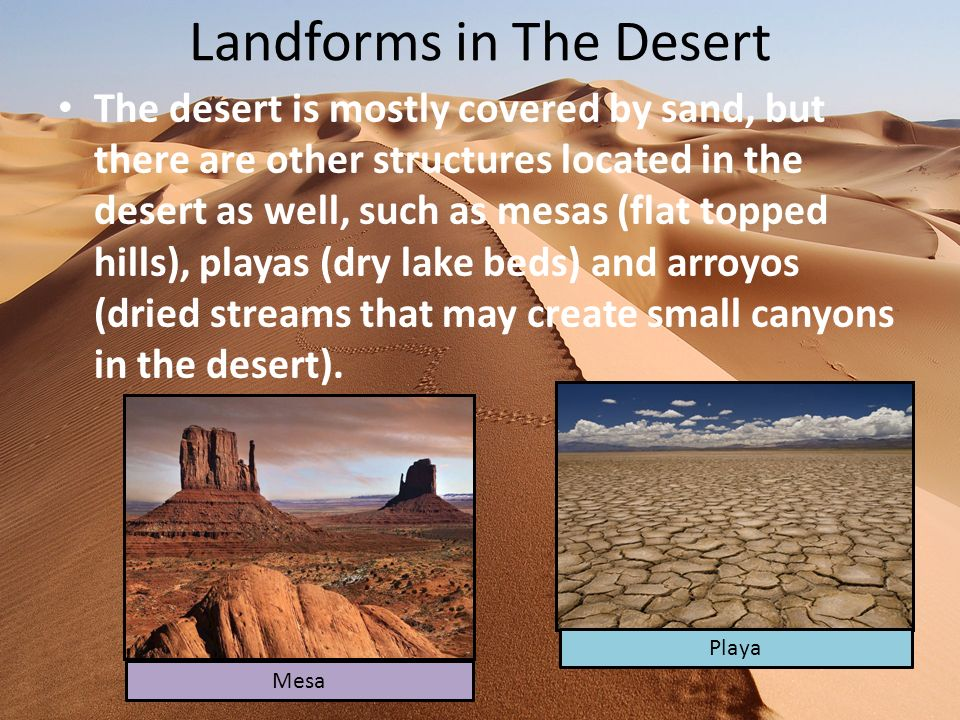 Landforms in The Desert