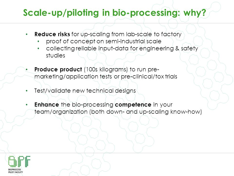 Scale-up/piloting in bio-processing: why