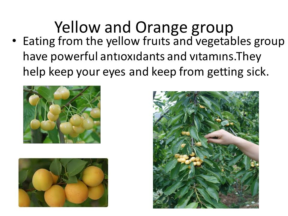Yellow and Orange group