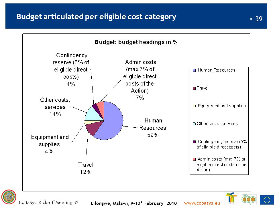 Budget articulated per eligible cost category