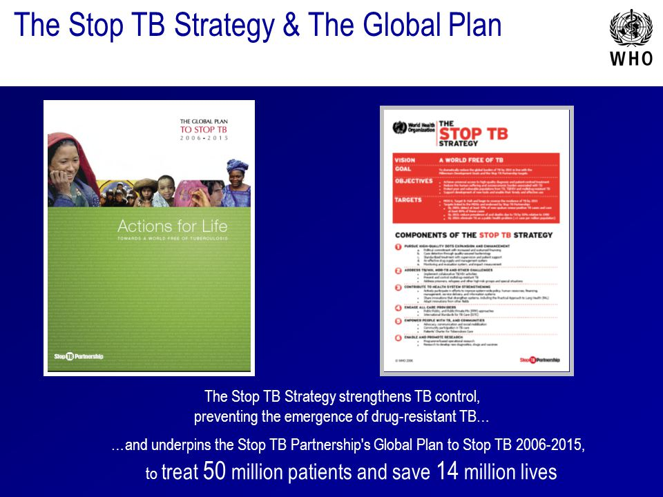 The Stop TB Strategy & The Global Plan