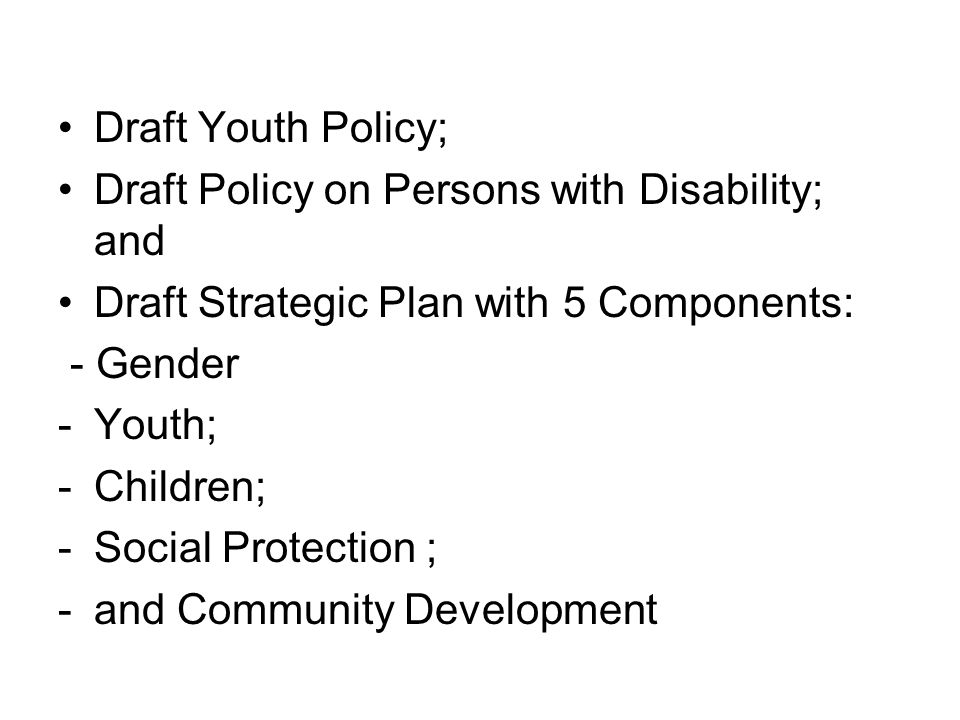 Draft Youth Policy; Draft Policy on Persons with Disability; and. Draft Strategic Plan with 5 Components: