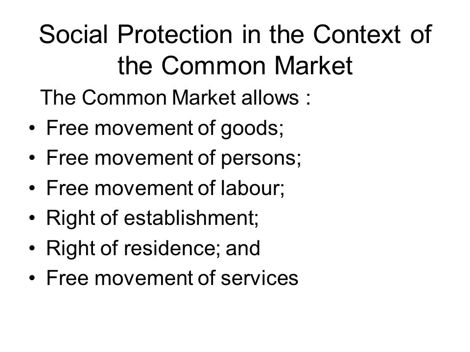 Social Protection in the Context of the Common Market