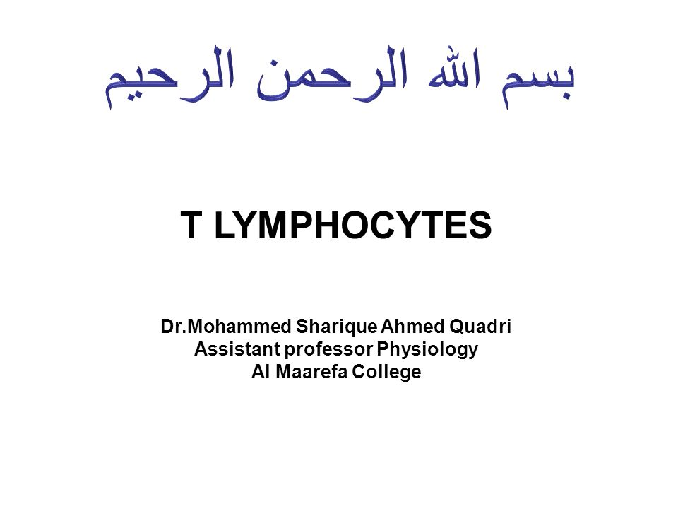 Dr.Mohammed Sharique Ahmed Quadri Assistant professor Physiology