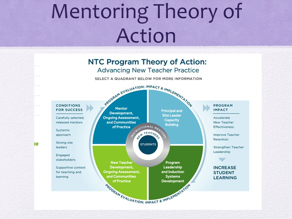 Mentoring Theory of Action