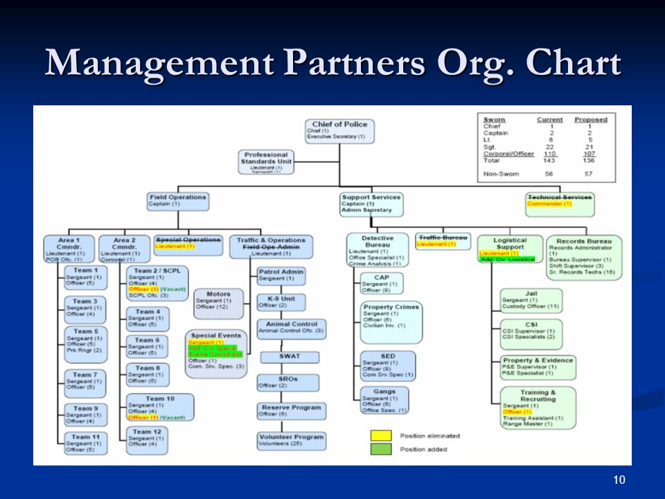 Management Partners Org. Chart