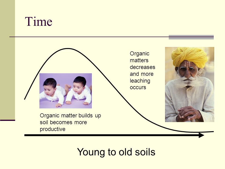 Time Organic matters decreases and more leaching occurs. Organic matter builds up soil becomes more productive.
