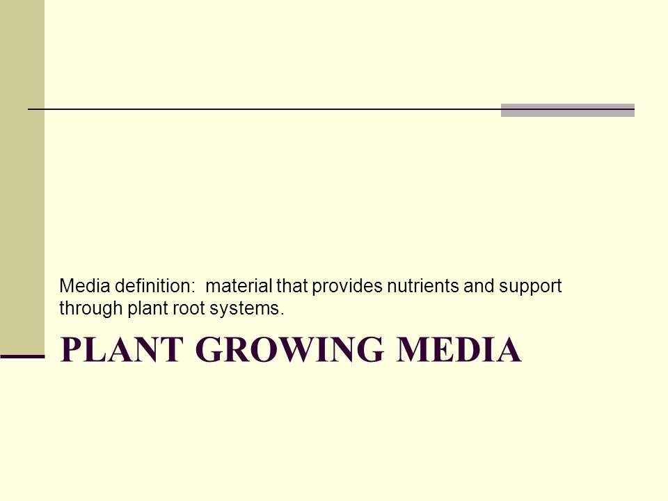 Media definition: material that provides nutrients and support through plant root systems.