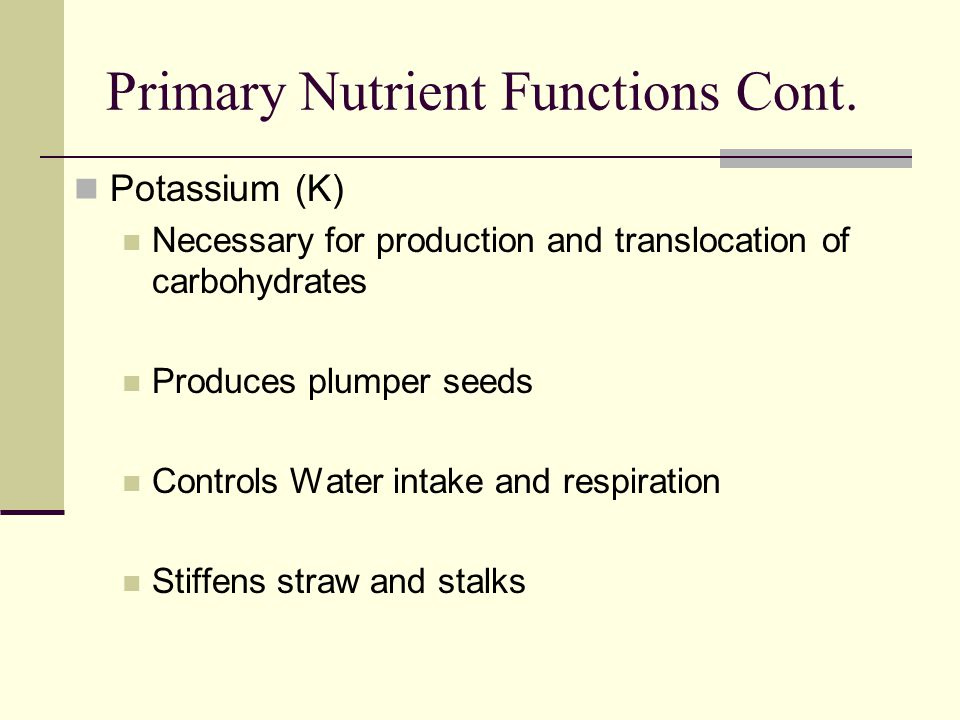 Primary Nutrient Functions Cont.