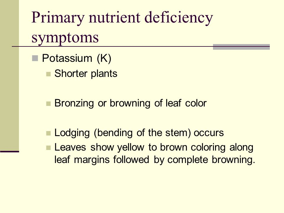 Primary nutrient deficiency symptoms