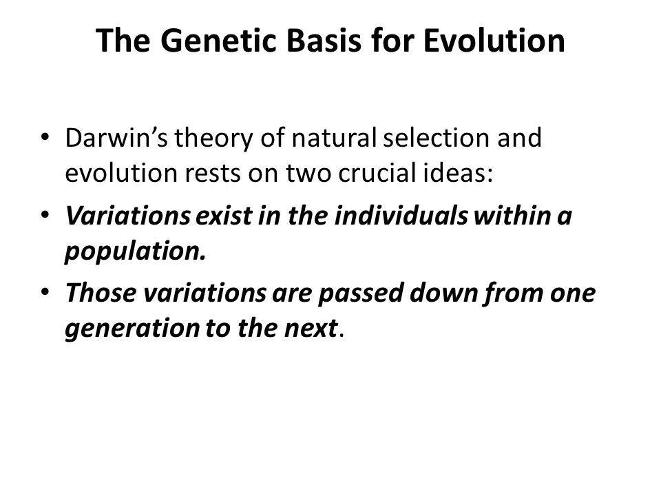 The Genetic Basis for Evolution