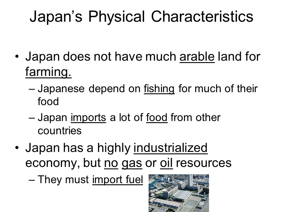 Japan's Physical Characteristics
