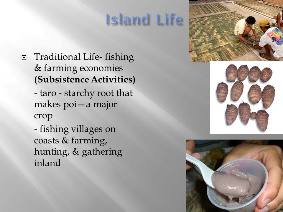 Island Life Traditional Life- fishing & farming economies (Subsistence Activities) - taro - starchy root that makes poi—a major crop.