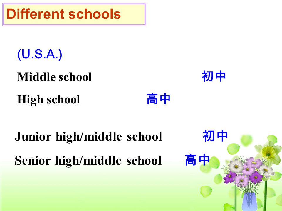 Different schools Junior high/middle school 初中