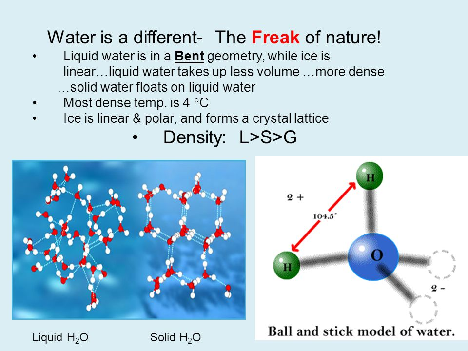 Water is a different- The Freak of nature!