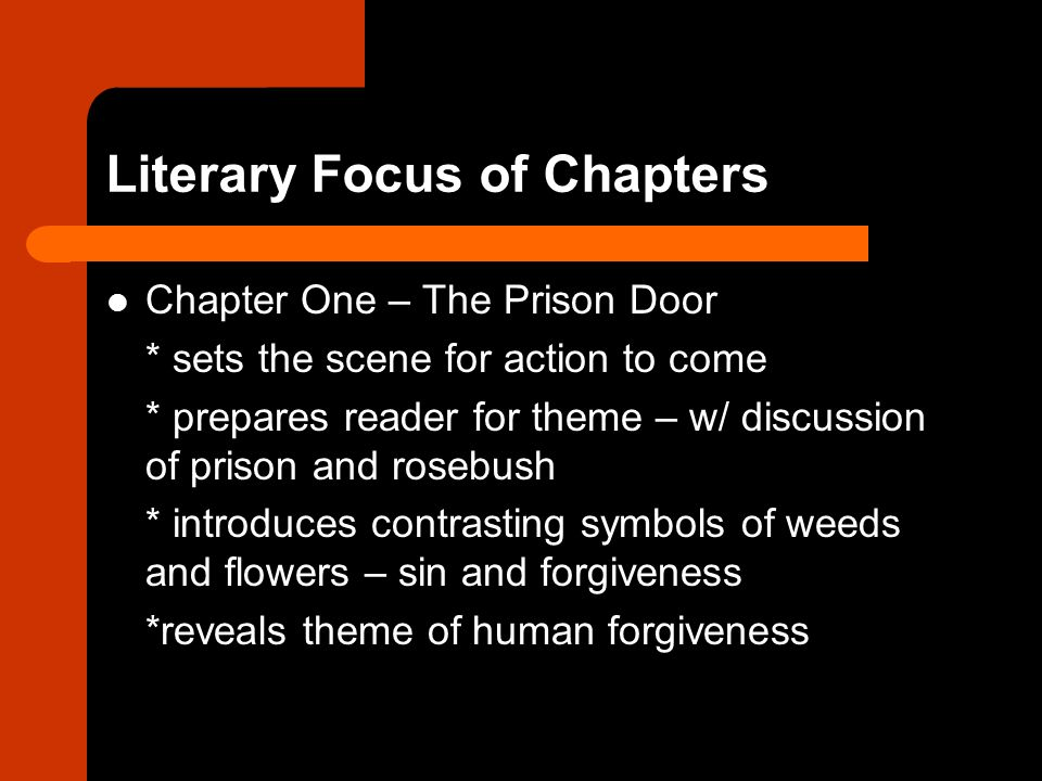 Literary Focus of Chapters