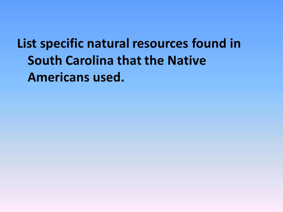 List specific natural resources found in South Carolina that the Native Americans used.