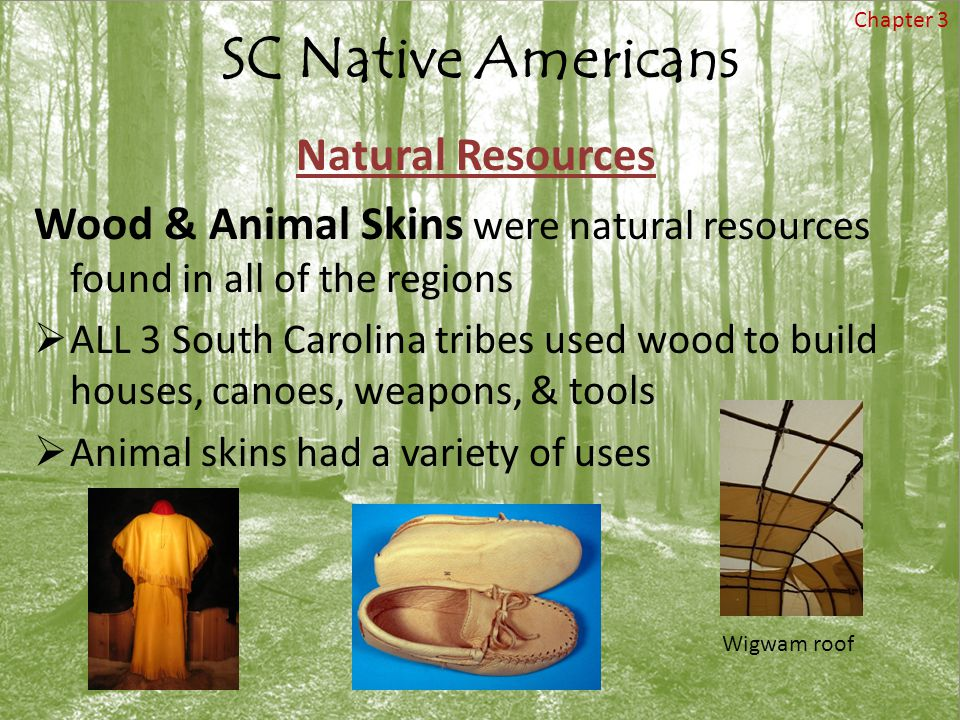 SC Native Americans Natural Resources