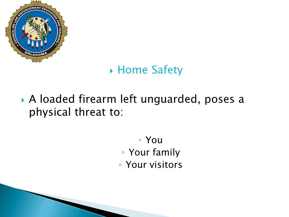 A loaded firearm left unguarded, poses a physical threat to: