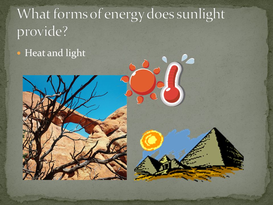What forms of energy does sunlight provide