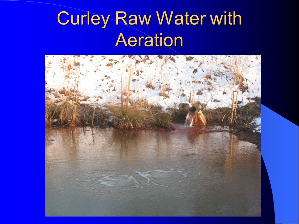 Curley Raw Water with Aeration