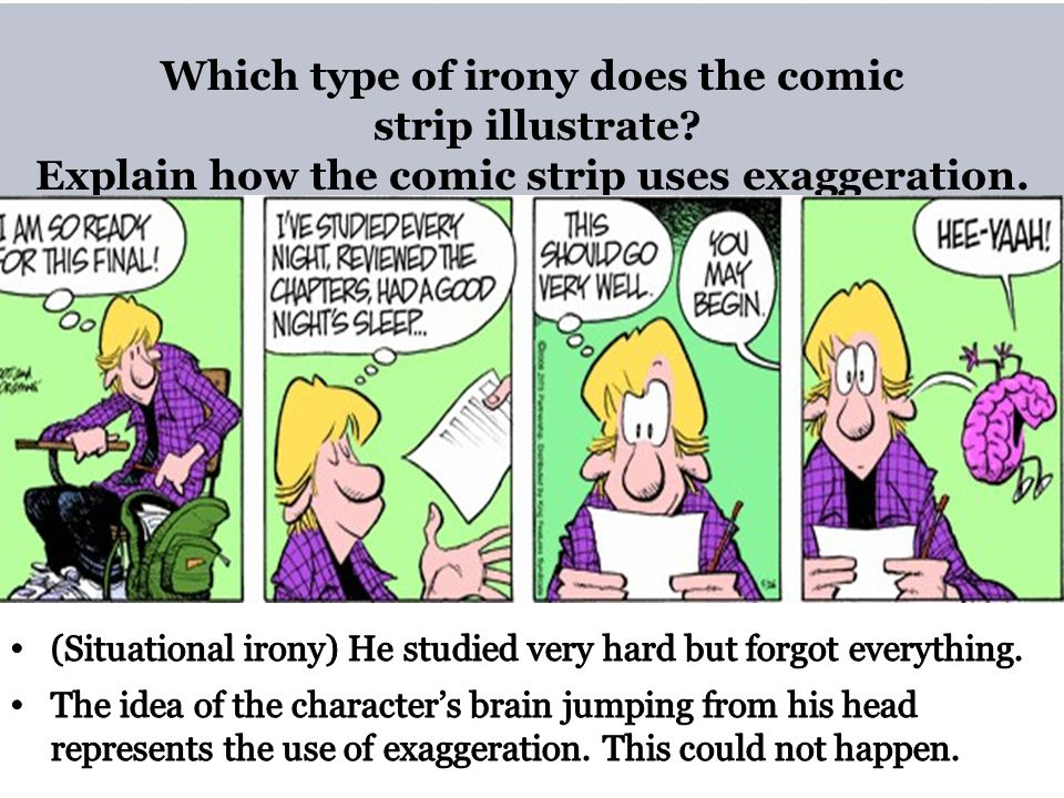 Which type of irony does the comic strip illustrate
