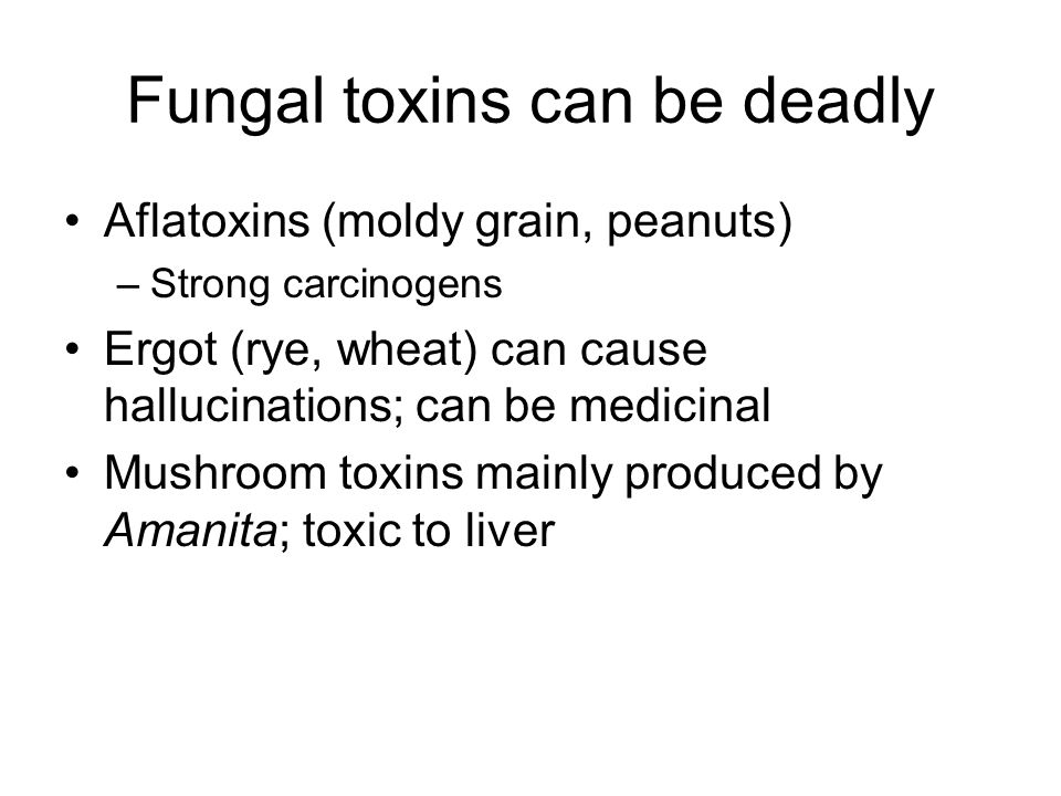 Fungal toxins can be deadly