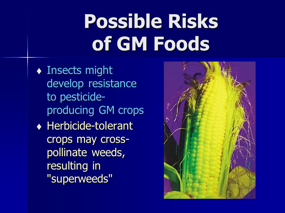 Possible Risks of GM Foods