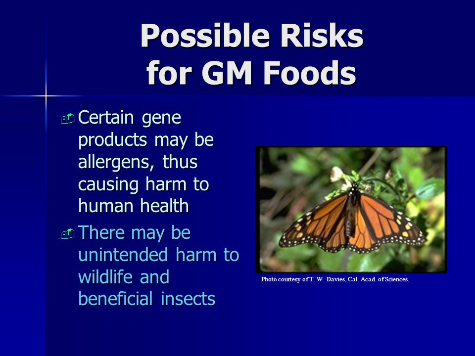 Possible Risks for GM Foods
