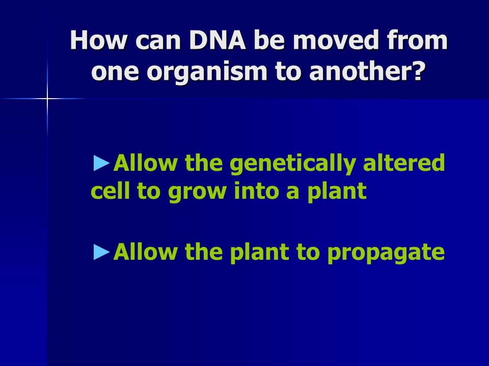 How can DNA be moved from one organism to another