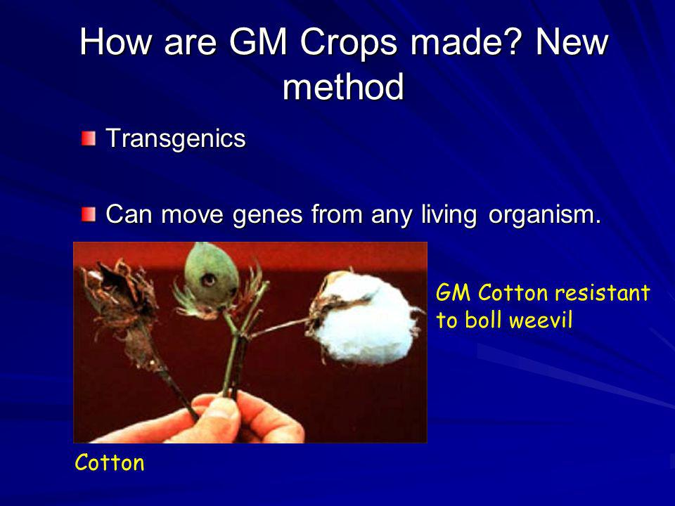 How are GM Crops made New method