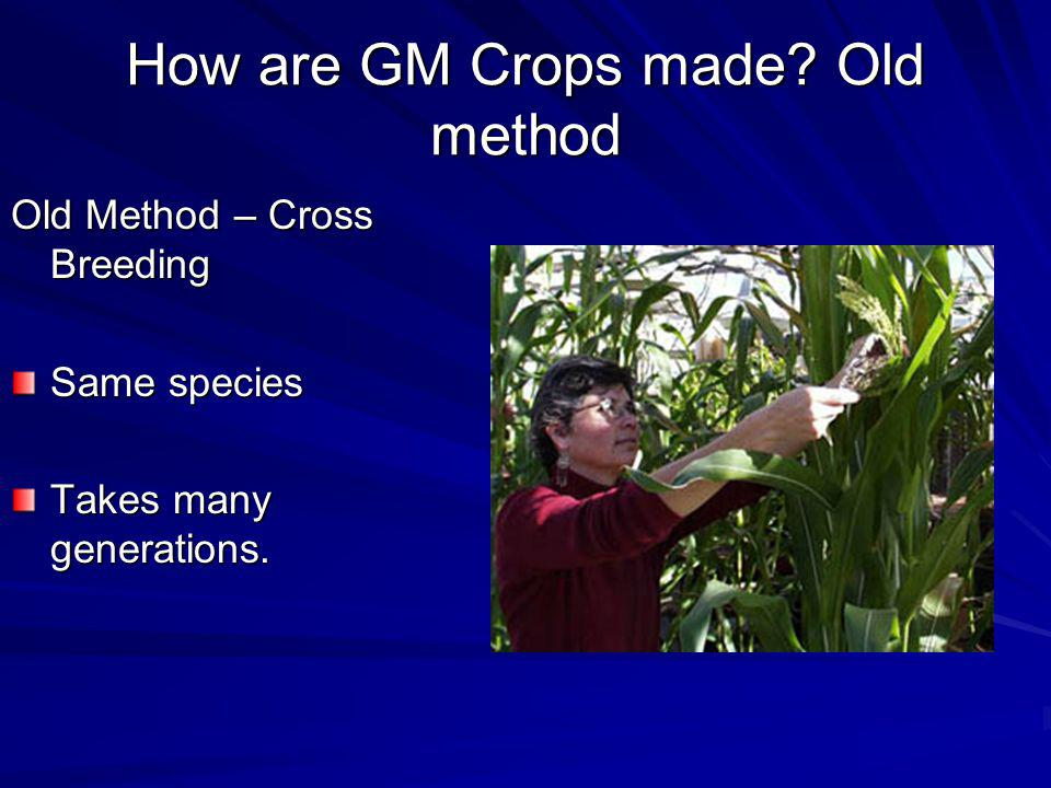 How are GM Crops made Old method