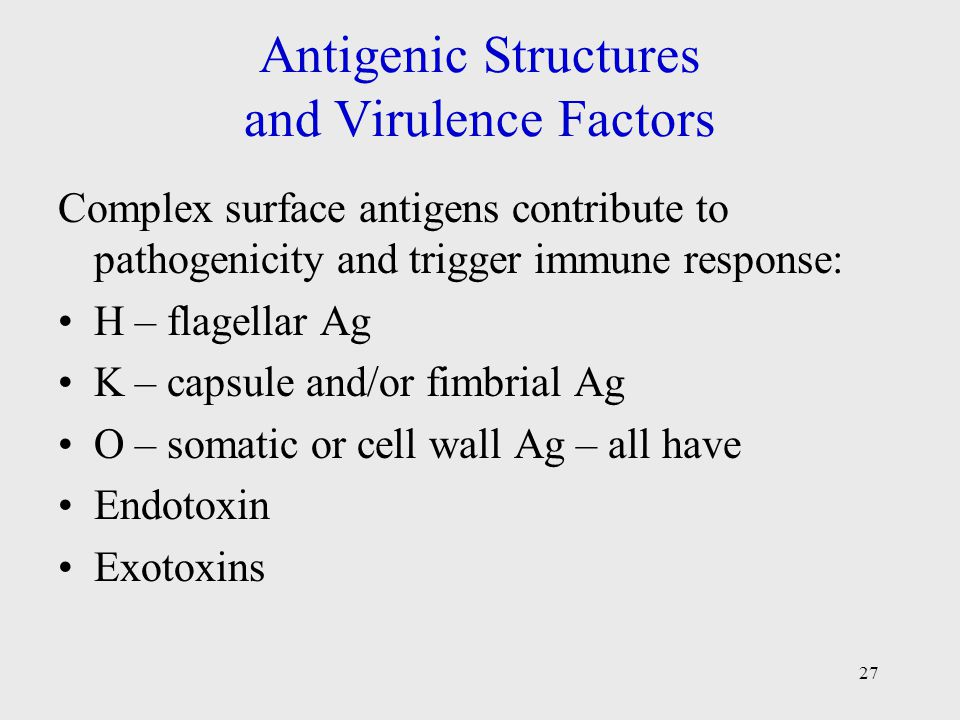 Antigenic Structures and Virulence Factors