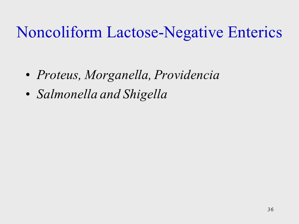 Noncoliform Lactose-Negative Enterics
