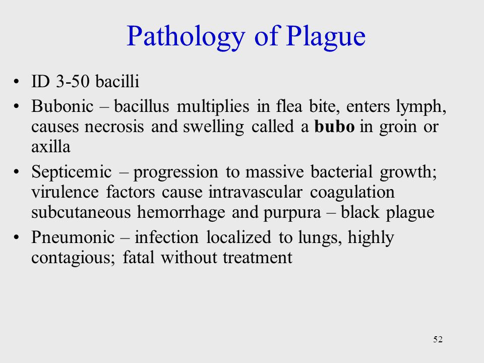 Pathology of Plague ID 3-50 bacilli