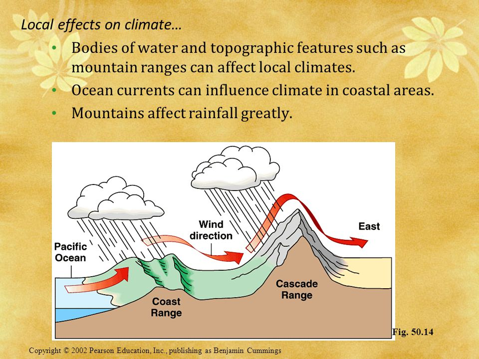 Local effects on climate…