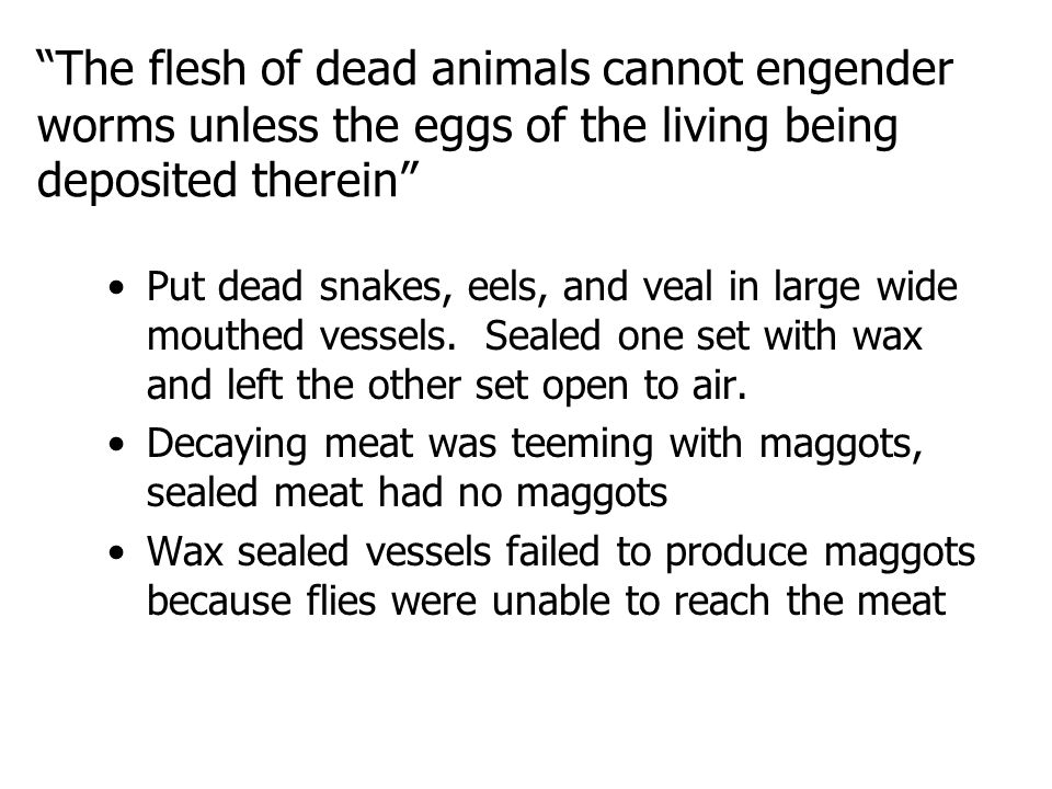 The flesh of dead animals cannot engender worms unless the eggs of the living being deposited therein