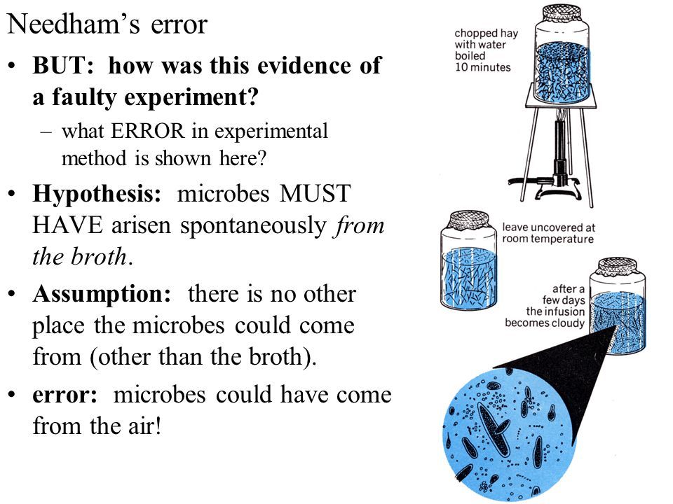 Needham's error BUT: how was this evidence of a faulty experiment