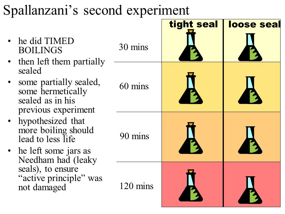 Spallanzani's second experiment