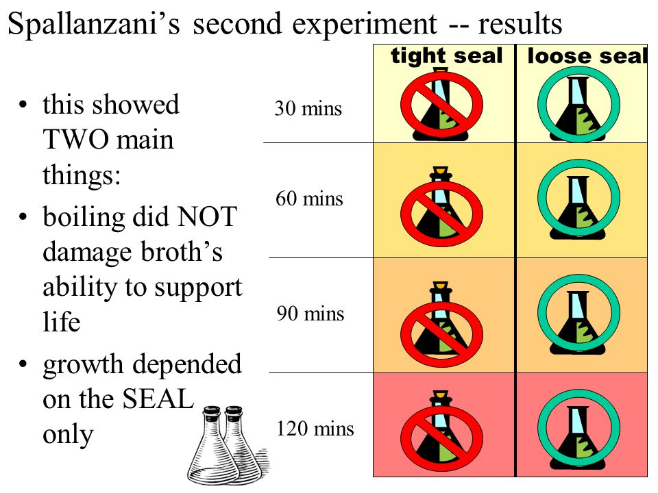 Spallanzani's second experiment -- results