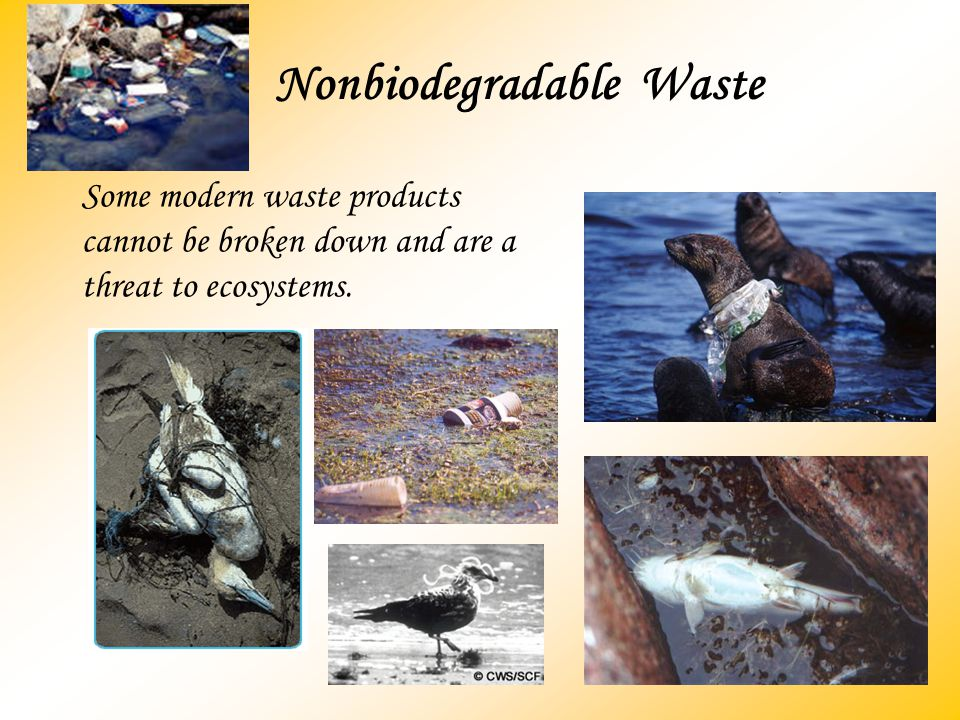 Nonbiodegradable Waste