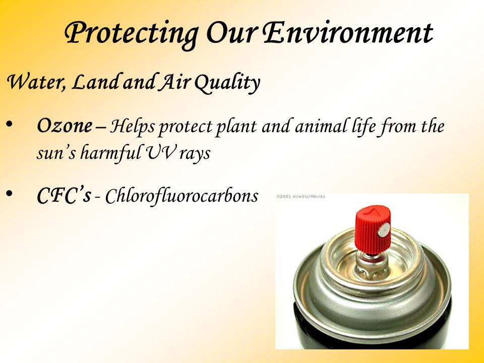 Protecting Our Environment